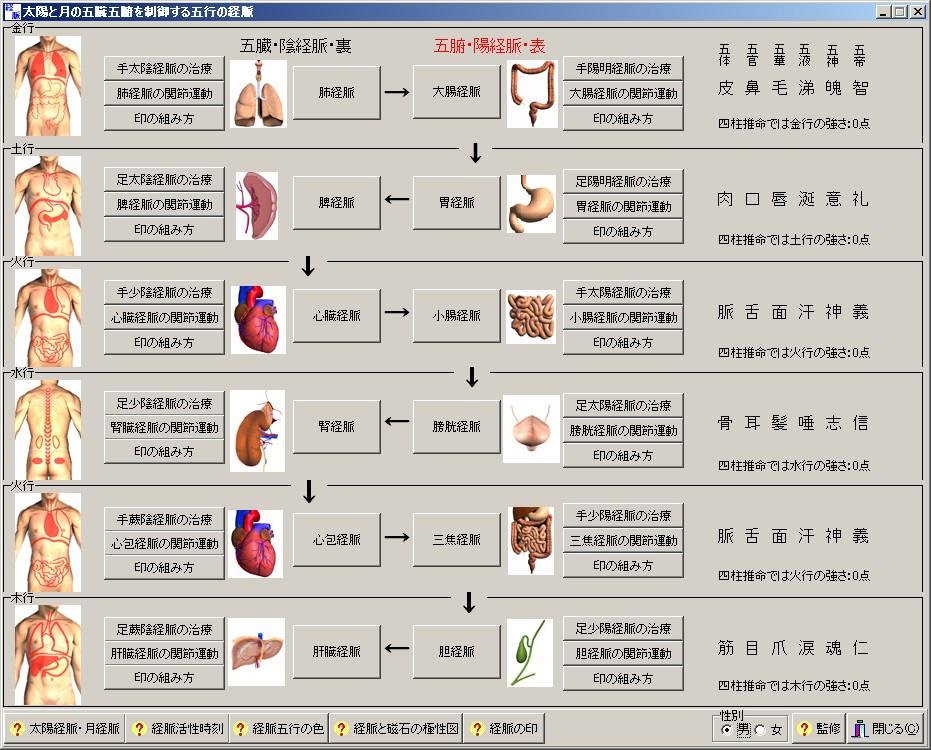 【気の癒し・基礎編 vol8】東洋医学の種類